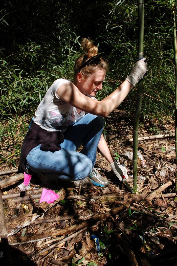 GANP Bamboo Sara Eshleman 9-16-17 DSC_1394