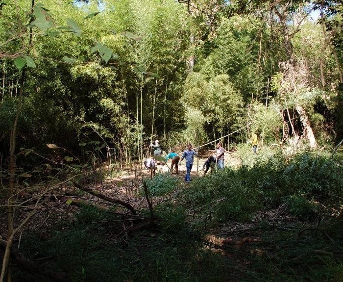 GNAP Bamboo Open 9-16-17 DSC_1398